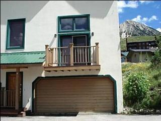 Beautiful Views of Mt. Emmons - Sunny Cozy Condo (1022) - Crested Butte vacation rentals