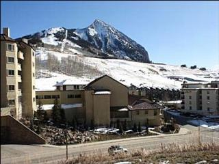 Great Condo for a Ski Vacation - Majestic Mountain Views (1023) - Crested Butte vacation rentals