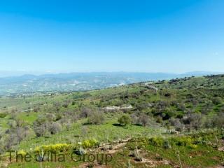 Villa 52575 - Paphos vacation rentals