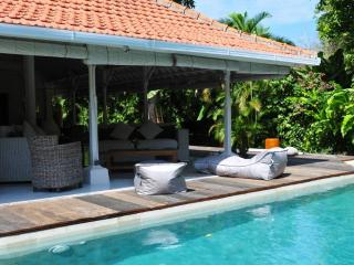 Superb 3/4 bd Villa with pool, Sanur, Beach walk - Sanur vacation rentals