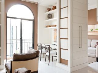 2 Bedroom Penthouse Apartment in Itaim Bibi - Sao Paulo vacation rentals