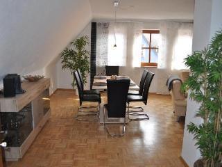 Vacation Apartment in Veitshöchheim - 1098 sqft, newly furnished, central, spacious (# 2514) - Veitshochheim vacation rentals
