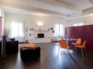Open Studio Apartment in Florence by Duomo - Malmantile vacation rentals