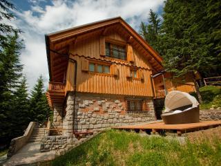 Wellness house Vila Triglav on Pokljuka - Zgornje Gorje vacation rentals