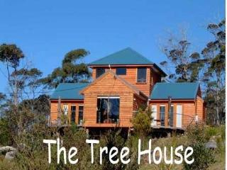 The Tree House - Alonnah vacation rentals