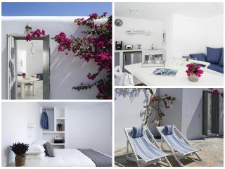 Camares Suite Mykonos-Luxury Suite with Pool - Mykonos vacation rentals