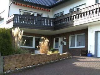 LLAG Luxury Vacation Apartment in Warstein - 915 sqft, Infrared cabin, WiFi (# 2540) - Warstein vacation rentals
