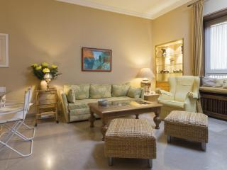 [411]Elegant apartment in the historic city centre - Spain vacation rentals