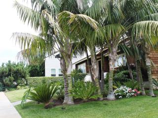 Beautiful Home - Ocean Views - walk to restaurants - San Diego County vacation rentals