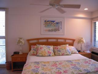 Wailea Ekahi Village-Luxury 1BR condo for couples - Wailea vacation rentals