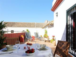 Alameda Terrace | 1 bedroom large private terrace - Seville vacation rentals