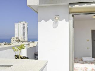 gordon beach 3 Bd PENTHOUSE/ Duplex WI - Tel Aviv vacation rentals