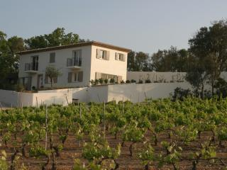 Villa 5 bedrooms 5 bathrooms heated pool & air con - Saint-Maxime vacation rentals
