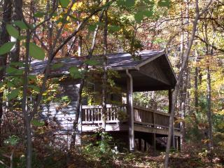 Cabins in Willoughby Woods   2  bedroom cabins - Brevard vacation rentals