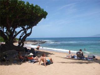NAPILI BAY #204 - Kahana vacation rentals