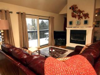 stonybrook retreat - Stowe Area vacation rentals