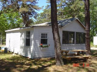 Brownies Cabin #5 - Wellfleet vacation rentals