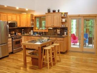 Stunning Vacation Country & Ski House - Woodstock vacation rentals