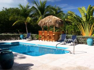 BAREFOOT PALMS,  Kick Back and Relax Tiki Style! - Parrot Cay vacation rentals