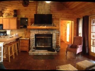 Rustic Log Cabin,Secluded,2 Jacuzzi,WiFi 1mile SDC - Branson vacation rentals