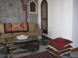 Qasr e  Feroze,   T 72/4, Hauzkhas Village, Delhi. - New Delhi vacation rentals