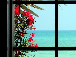 Ocean Front Luxury Home in Gated Community - Nassau vacation rentals