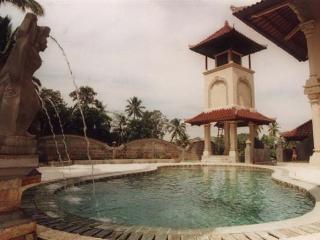 Villa Paradise, WiFi, Pool, Nice Views, Breakfast - Ubud vacation rentals