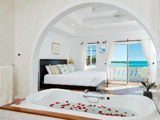 Direct Beach Access - Best View Villa - Snorkeling - Providenciales vacation rentals
