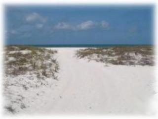 Coconut Breeze IV - Monthly Beach Rental - Image 1 - Clearwater Beach - rentals