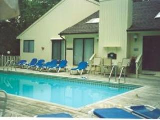 SECLUDED BEACH CONTEMPORARY ESTATE - Center Moriches vacation rentals