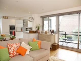 Fantastically located 2 bedroom short term let - London vacation rentals