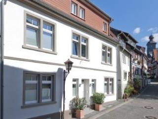LLAG Luxury Vacation Apartment in Heppenheim (Bergstrasse) - 409 sqft, exclusive, modern (# 2638) - Neckarsteinach vacation rentals