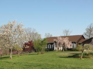 350 Old Farm Road - Shenandoah Valley vacation rentals