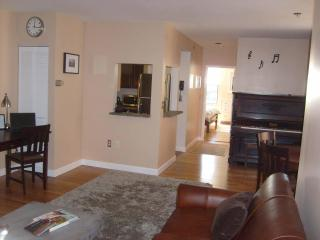Modern Luxury Condo in Classic Brownstone Back Bay - Lexington vacation rentals