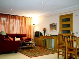 Ample,comfortable apartment. Central Valencia.Wifi - Valencia Province vacation rentals