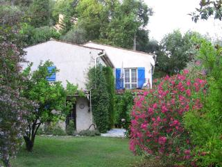 Stunning, Pet-Friendly Villa with a Hot Tub and in Perfect Location - Cote d'Azur- French Riviera vacation rentals