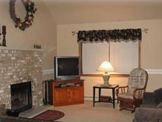 Spacious Living Room - Poconos Retreat with Game Room - Albrightsville - rentals