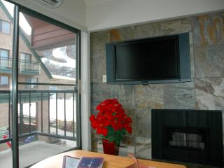 2BR/2BA SKI-IN/OUT SLOPESIDE VIEW - 3RD NT HALF! - Park City vacation rentals