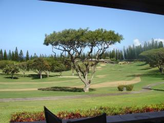 Luxury Kapalua Villa-April/May 2015 Special $298nt - Kapalua vacation rentals