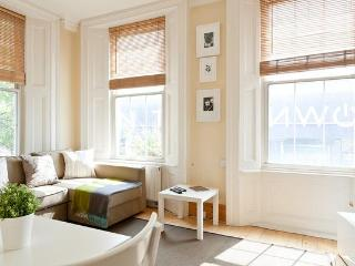 Gorgeous Apartment with Free Wifi - London vacation rentals