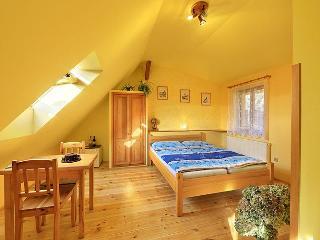 Perfect BandB in historic town C.Krumlov! - Lipno nad Vltavou vacation rentals