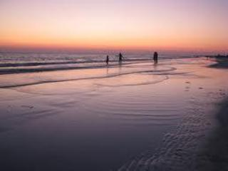 Sunset on Siesta Key Beach - Siesta Key 2/1 Updated Modern/Contemporary Decor - Siesta Key - rentals