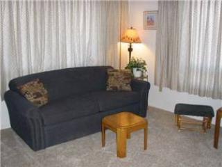 AS4229 - Image 1 - Pagosa Springs - rentals