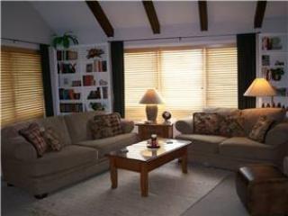 AS4253 - Image 1 - Pagosa Springs - rentals