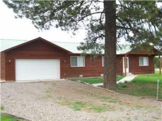 FOOTHILL 36 - Image 1 - Pagosa Springs - rentals