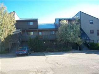 PW3204 - Image 1 - Pagosa Springs - rentals