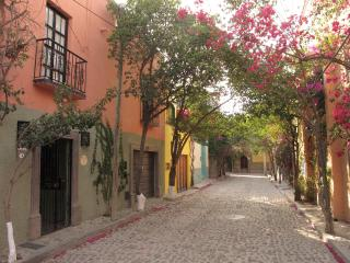Magical Mexican Casa-Cooks Delight-Tranquil/Secure - San Miguel de Allende vacation rentals