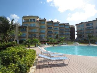Luxory Condo Oceania Romantic on 4th Floor Building Boca Grandi - Aruba vacation rentals