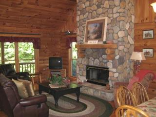 THE LOG HOUSE  -  ROBERT JOHNSON RENTALS LLC - Galena vacation rentals