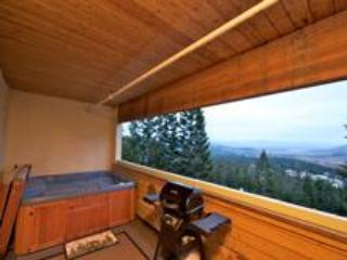 Luxury Alpine Mountainside Condo, Mammoth Lakes - Mammoth Lakes vacation rentals